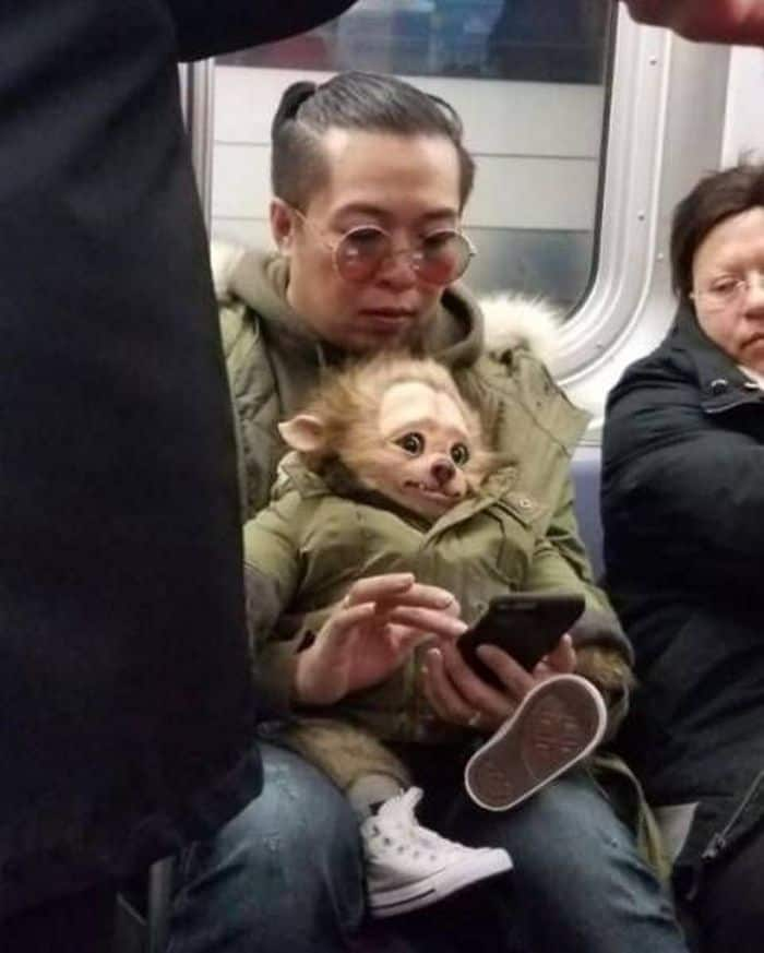 32 Ridiculous Photos of Subway That Will Make You Lol -03