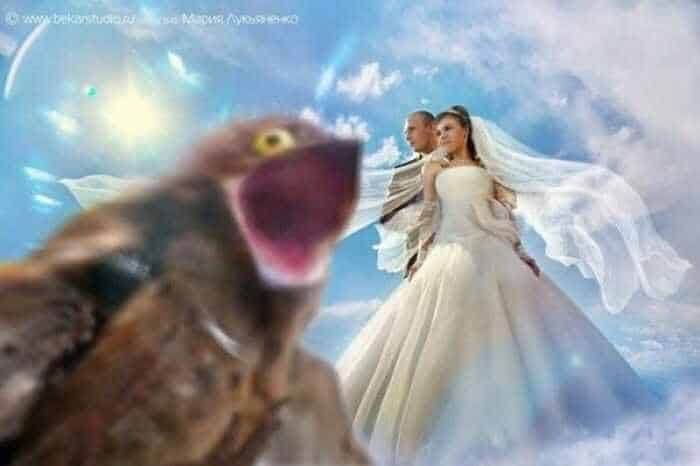 40 Ridiculous Photos of Russian Weddings That Are Hilarious -03