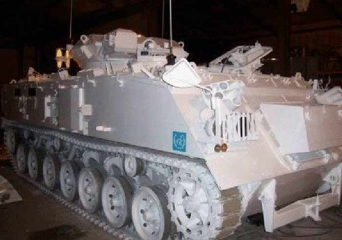 11 Pictures of Creative Tank Limo -09