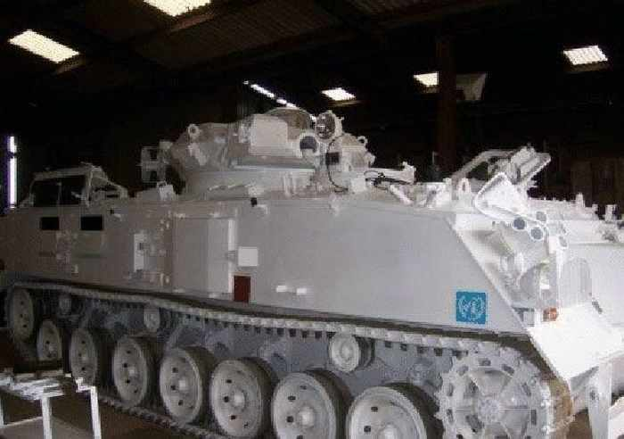 11 Pictures of Creative Tank Limo -10