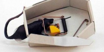 Unusual Funny Mousetrap – 4 Photos