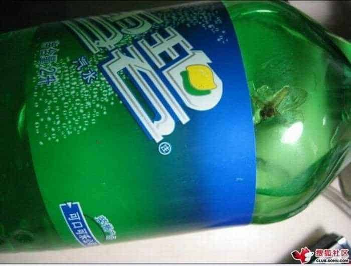 Meanwhile In China: Dead Fly In A Sprite Bottle -01