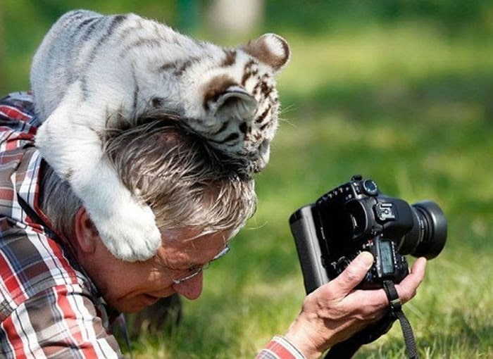 Wildlife Photography Disasters That Will Make You LOL (33 Pics)-14