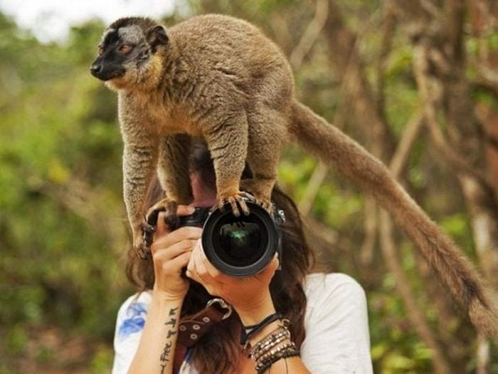 Wildlife Photography Disasters That Will Make You LOL (33 Pics)-16