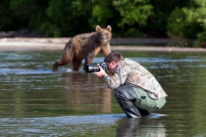 Wildlife Photography Disasters That Will Make You LOL (33 Pics)-20