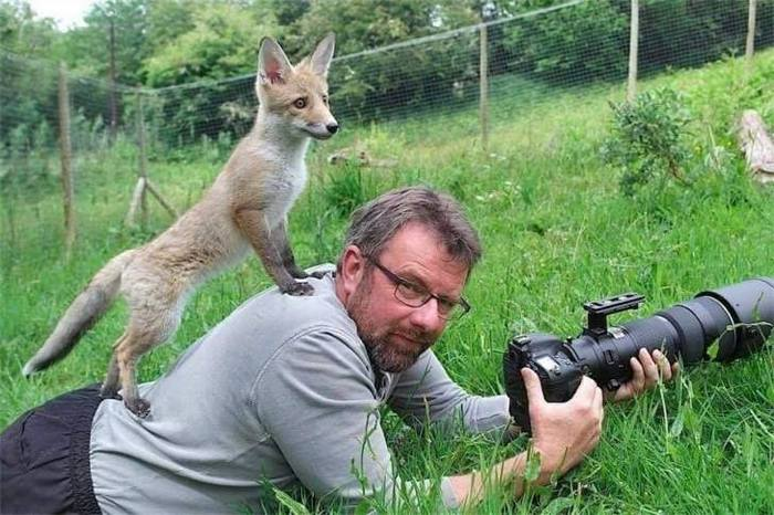 Wildlife Photography Disasters That Will Make You LOL (33 Pics)-22