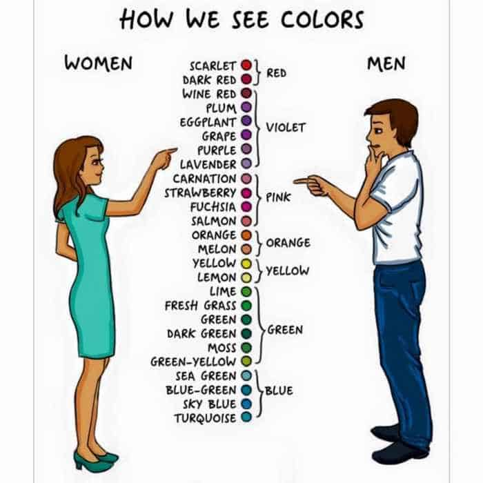 15 Women VS Men Differences Will Blow Your Mind -09