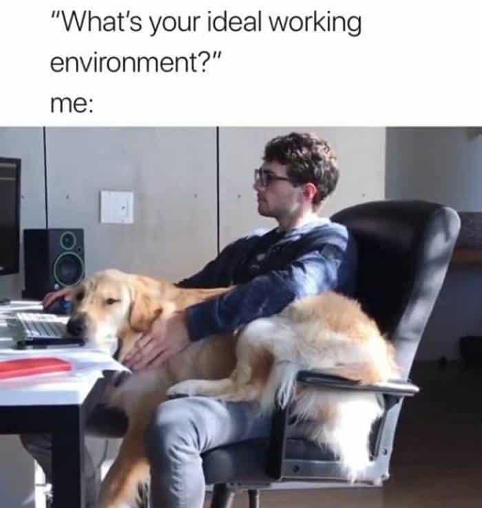 52 Work Memes and FAILs That Will Help Get You Through the Week -14